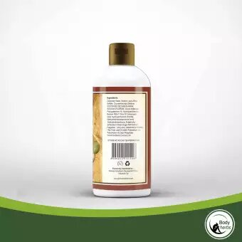 Body Herbs Shampoo with Conditioner 300mL (w Gugo, Olive OIl, Stevia) - GIDC Philippines