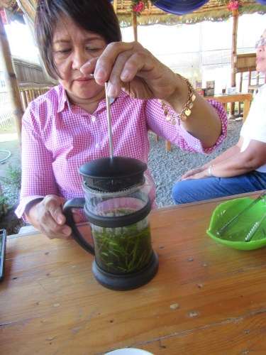 SWEET & FIT Mrs. De Leon preparing Stevia tea with tarragon.