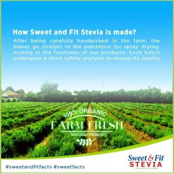 Sweet & Fit Stevia Farm - GIDC Philippines